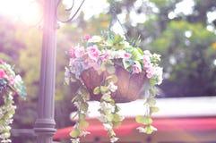 Seau de fleurs Image libre de droits