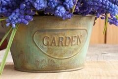 Seau grunge de vintage avec le jardin d'inscription sur une table en bois Image stock