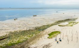 Mombasa beach fishermen seaview coastline. Seaview of the beach at the Kenyan city of Mombasa with few fishermen staying idle as the low tide stops them from Royalty Free Stock Images