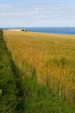 Seaview bij Baai Scourie Royalty-vrije Stock Afbeeldingen