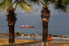 Seaview with cargo ship and palms. Seaview from the shore with palms and red cargo ship Stock Photo