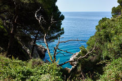 Seaview. Near Petrovac town, Montenegro Royalty Free Stock Photo