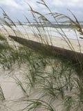 SeaView. Ocean viewed through sea grasses Royalty Free Stock Images