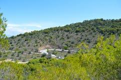 Seaview på den Aegina ön i Grekland Arkivbild