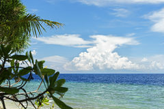Seaview with palm leaf and blue sky Stock Photos