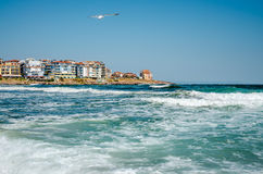 Seaview with waves and seagull. Seaview with waves and old town on background Royalty Free Stock Photos