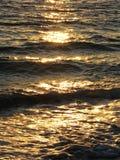 Seawaves Στοκ Εικόνες
