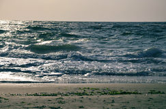 Seawaves Stock Images