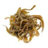 Seaweed ламинарии (келпа) на белой предпосылке Стоковое фото RF