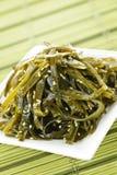 seaweed салата Стоковое Изображение RF