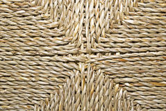 Seaweed. Detail of  woven seaweed fibres Stock Photos
