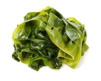 seaweed imagens de stock royalty free