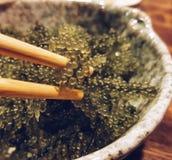 seaweed Arkivfoton