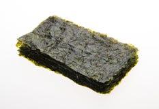 seaweed alga seca no fundo imagens de stock