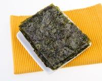 seaweed alga seca no fundo imagem de stock royalty free