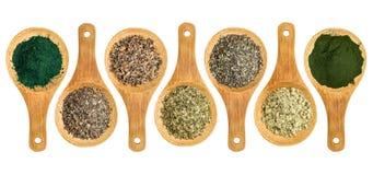 Seaweed and algae nutrition supplements. (Irish moss, wakame, bladderwrack, wakame, kelp, spirulina,chlorella) - top view of isolated wooden spoons Royalty Free Stock Photos