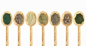 Seaweed and algae supplements supplements. A collection of seaweed and algae dietary supplements on wooden spoons - spirulina, bladderwrack, kelp, sea lettuce Royalty Free Stock Photo