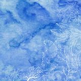 Seaweed on a blue watercolor background. Vector illustration with space for text. Invitation, greeting card or an element for your. Marine background with algae Royalty Free Stock Photos