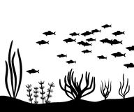 Seaweed at the bottom of the sea and school fish vector silhouette. Seaweed at the bottom of the sea and school fish vector Royalty Free Stock Photo