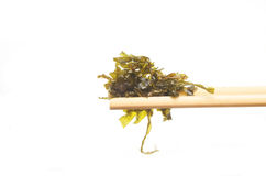 Seaweed in chopsticks. Crispy fried seaweed in chopsticks Stock Photos