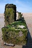 Seaweed Covered Breakwater Stock Photos