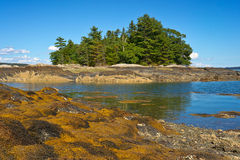 Low tide coastal Maine Stock Photo