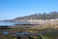 Seaweed Covered Rocks at Limekilns Stock Image