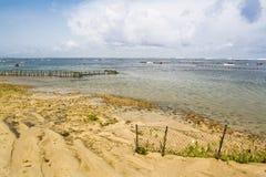 Seaweed farm. On the Gerger beach,Bali stock photos