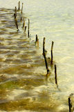 Seaweed farm. In the indian ocean Royalty Free Stock Photography