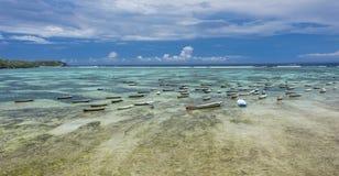 Seaweed farming at Nusa Lembongan, Bali. Boats and parcels of seaweed farmers at crystal clear waters of Nusa Lembongan, Bali Royalty Free Stock Photo