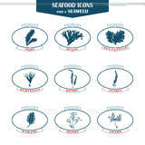 Seaweed icons set Royalty Free Stock Images