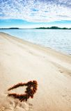 Seaweed on perfect beach Royalty Free Stock Image