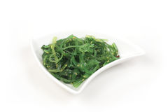 Seaweed salad. In a white plate on a light background Royalty Free Stock Photo