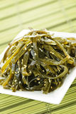 Seaweed salad Royalty Free Stock Image