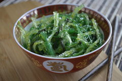 Seaweed salad. In an asian bowl Stock Photography