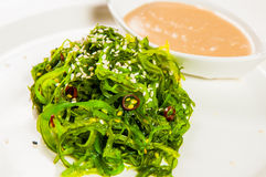 Seaweed salad with the dressing on the plate Stock Photography