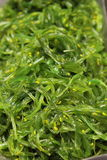Seaweed Salad, Royalty Free Stock Image