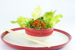 Seaweed salad in plate Royalty Free Stock Photo
