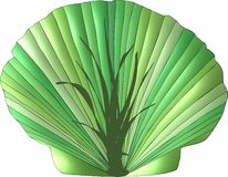 Seaweed Seashell Stock Photos