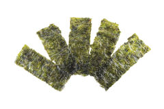 Seaweed sheet Royalty Free Stock Images