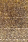 Seaweed sheet texture. Textture of an nori seaweed sheet (outer side Stock Images