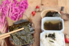 Seaweed soup is delicious and dried seaweed. Stock Images