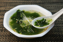 Seaweed soup Royalty Free Stock Image