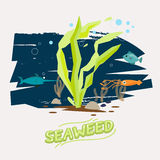 Seaweed under water with fish, octopus and Swordfish  - vector Stock Photo