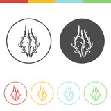 Seaweed vector icons. Vector set of seaweed icons in thin line style Stock Photography