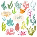 seaweeds Akvariumväxter, undervattens- plantera Isolerad uppsättning för vektorhavsväxt kontur royaltyfri illustrationer