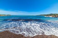 Seaweeds in Piccolo Pevero beach. Sardinia Stock Images