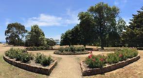 Seawinds trädgård fotografering för bildbyråer