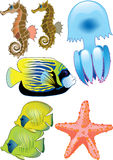 Seaword. Fish, starfish, jellyfish and seahorses Royalty Free Illustration