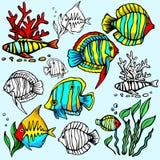 Seaworld Abbildungserie stock abbildung